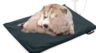 Amazon Is Selling Heated Pet Blankets To Keep Them Snug As A Bug At Christmas