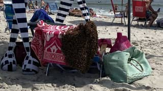 Scary Video Shows Thousands Of Bees Swarm Beachgoers