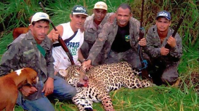 The poachers with a killed jaguar. Credit: CEN