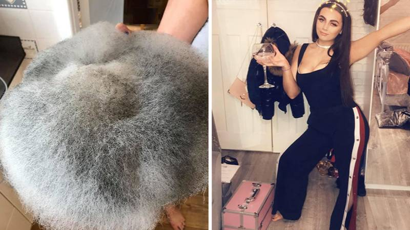 Teen Left Out A Mouldy Plate Of Food So Long It Now Looks Like A Fluffy Cushion