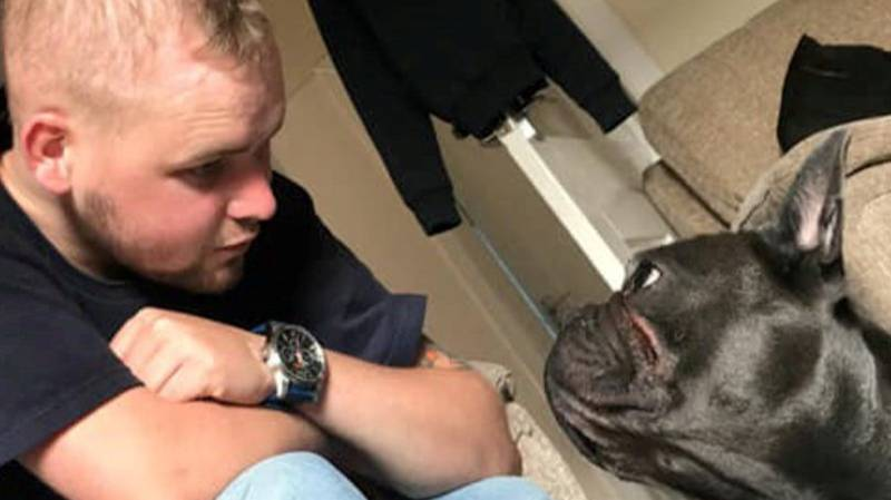 Dog Dies Just 15 Minutes After Owner Passes Away From Cancer