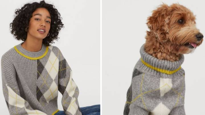 ​H&M and Pringle of Scotland Are Selling Matching Dog And Owner Jumpers