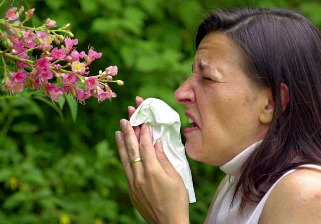 This week could be a bit of a sneeze fest for hay fever sufferers. Credit: PA